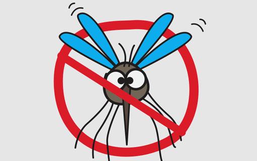 Ferramenta eletrônica contribui para eliminar focos do Aedes aegypti