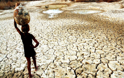 Mais de 5 anos de seca deixa vida da população nordestina mais cara
