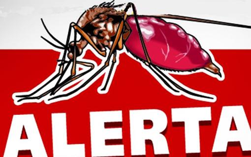 01072016_mosquito_PrefEparaguacuSP