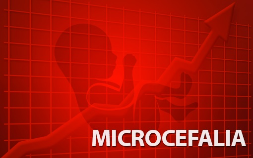 13112015_microcefalia_ag._cnm