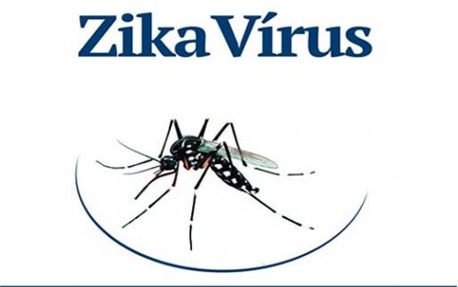 19012016_zikavirus_GovGo