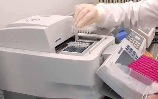 19022016_PCR_LacenPR