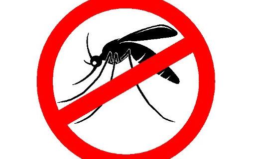 CNM destaca importância do Dia Nacional de Combate ao Mosquito; mobilização acontece nesta sexta, 2