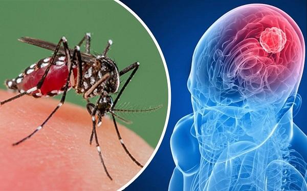 Zika combate tumor - Divulgacao