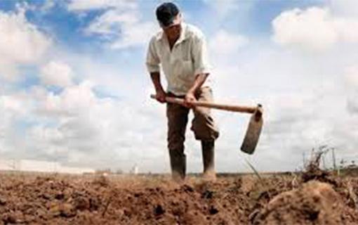 03032016 agricultorseca govAL