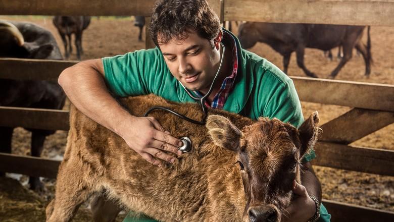 03062020 conselho federal de medicina veterinaria