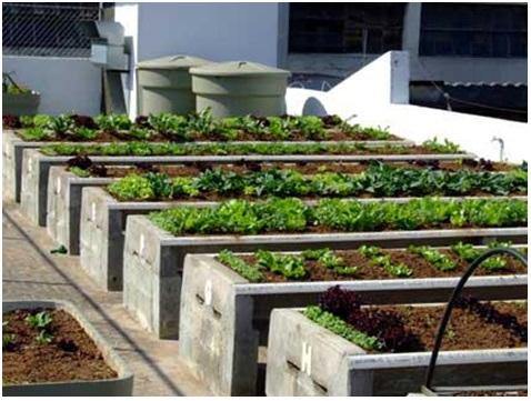 03102018 mini horta terraco