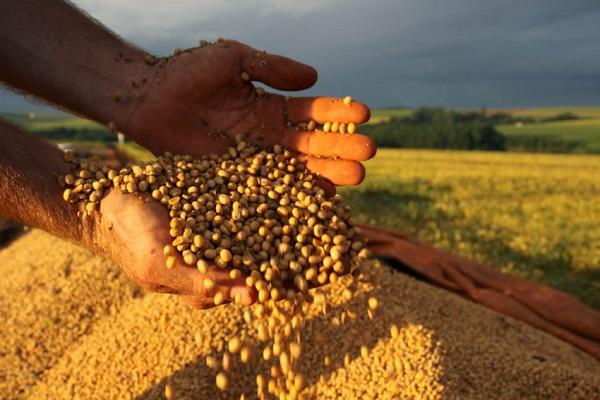 Brasil deve ter a segunda maior safra de grãos da história