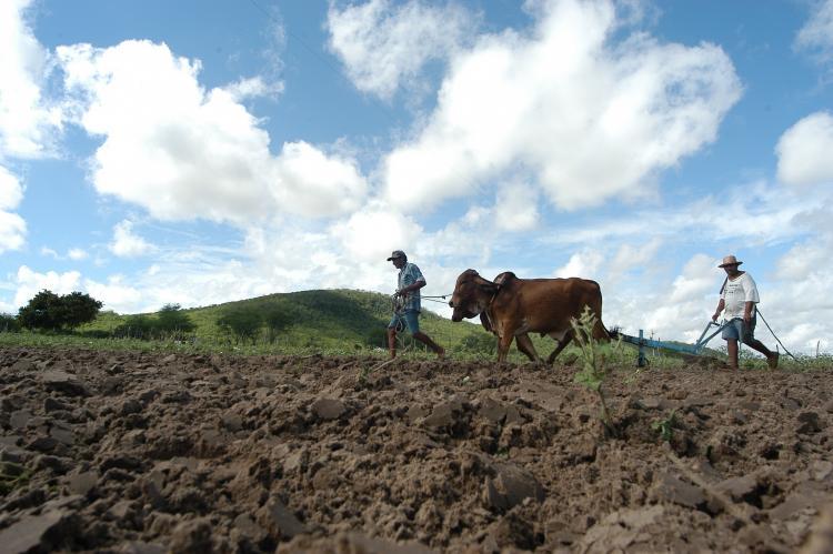 Ministerio Desenvolvimento Agrario
