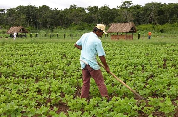 14052018 agricultura Joao Melo Empaer MT