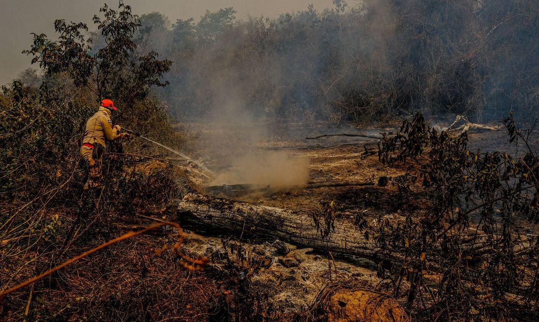 22102020 queimadas ag.brasil