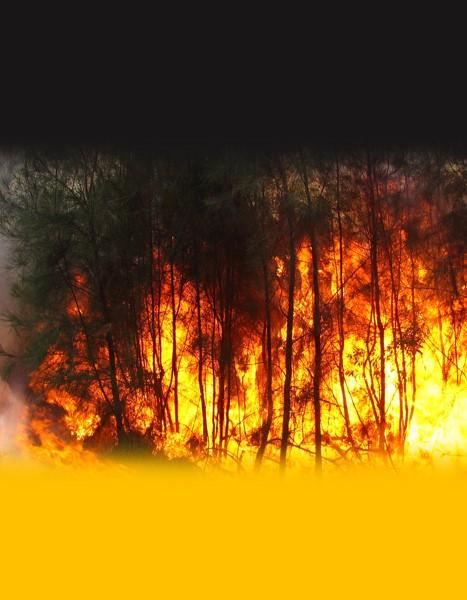 11052017 incendio ag. brasil