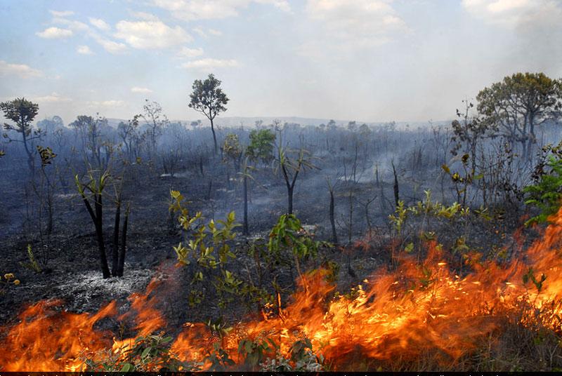 22092017 queimada prefDiamantino