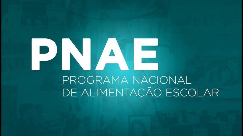 14022019 Pnae
