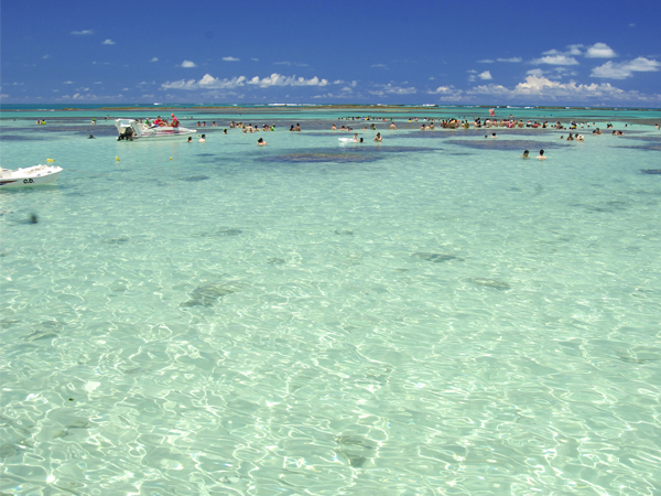 17022020 maragogi piscinas cred. portal brasil