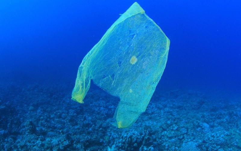 Saco plastico no oceano/ Funverde