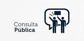 06052021 consulta publica