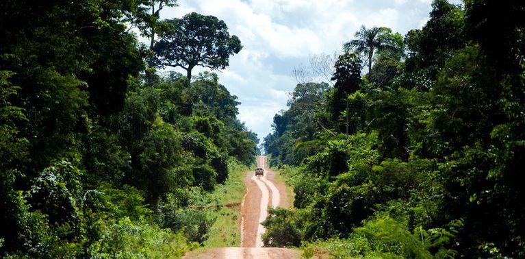 21112019 amazonia marcelo camargo agencia brasil